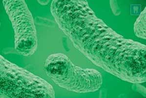 Infectie- en ziekteleer voor tandartsassistenten